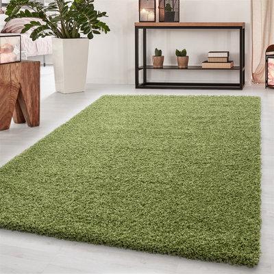 Vloerkleed Dream Shaggy Groen 4000